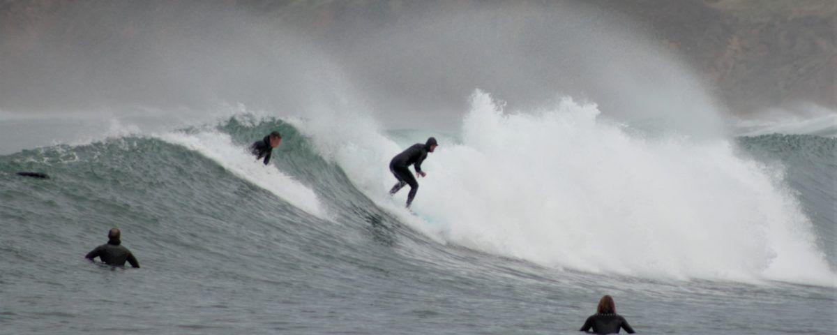Grupo de profesores de surf cogiendo horas